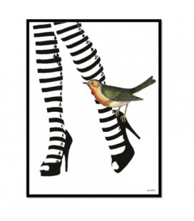 HOT LEGS Quadretto 20x25 - Vanilla Fly