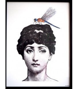LADY WITH BUG Quadretto 20x25 - Vanilla Fly