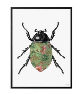 COLORED BEETLE Quadretto 30X40 - Vanilla Fly